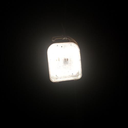 black midi's avatar