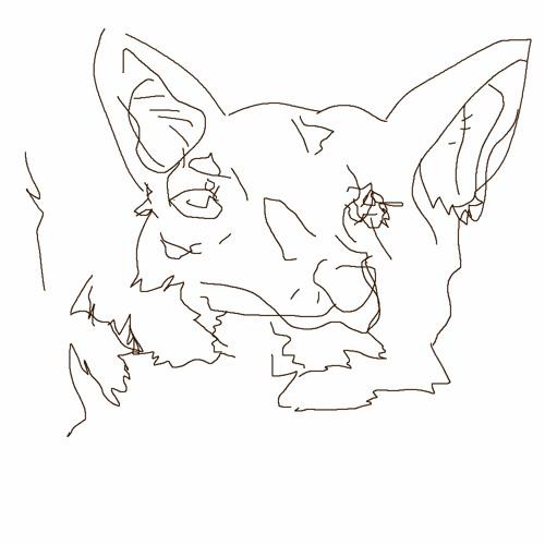 ookic ✮'s avatar
