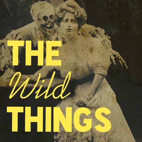 The Wild Things Podcast's avatar