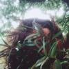 RITA'S RHYTHMIC REMEDIES #3 Portada del disco