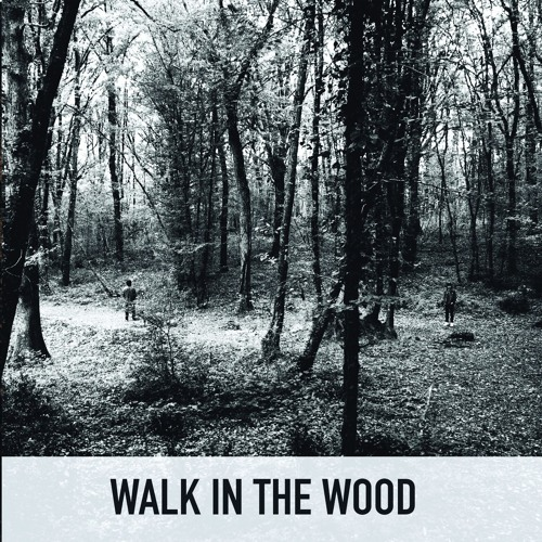 Walk in the Wood's avatar