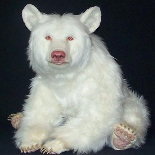 F.S.G Gritt Gritt's avatar