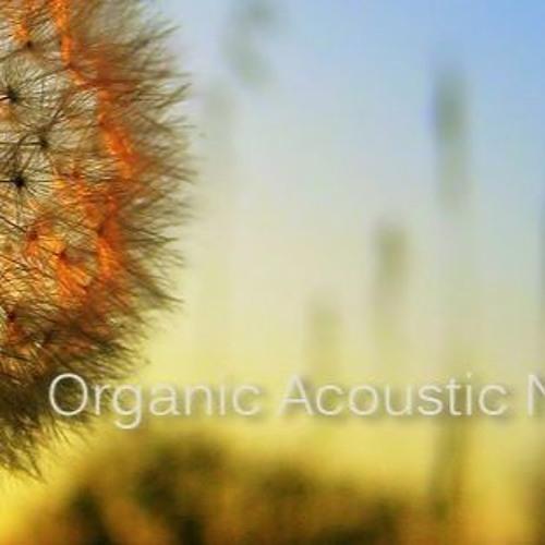 Organic Acoustic Netlabel's avatar