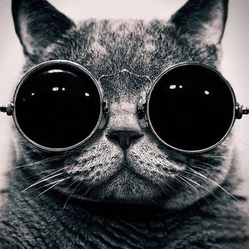 Gato Gotoso's avatar