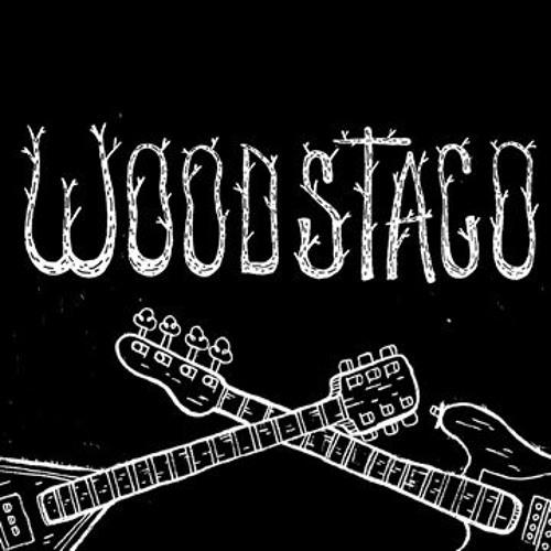 Woodstaco Festival's avatar