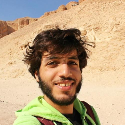 Mohamed Arafa 7's avatar