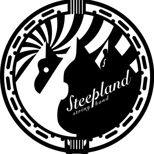 Steepland String Band's avatar