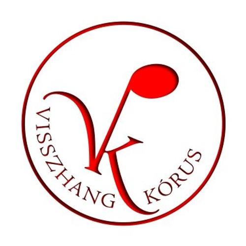 Visszhang kórus's avatar