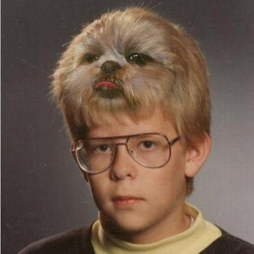 Matt Ross's avatar
