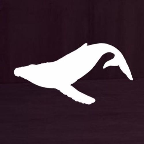 WHALER | Mashup & Reboots's avatar