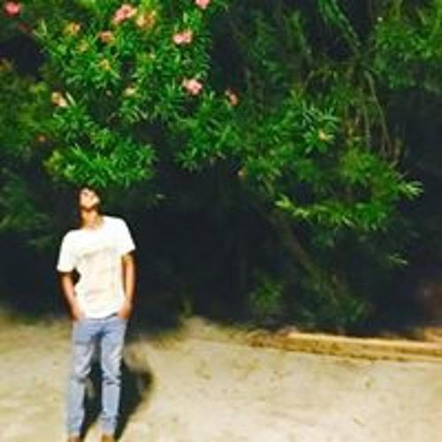 Ali Usham's avatar