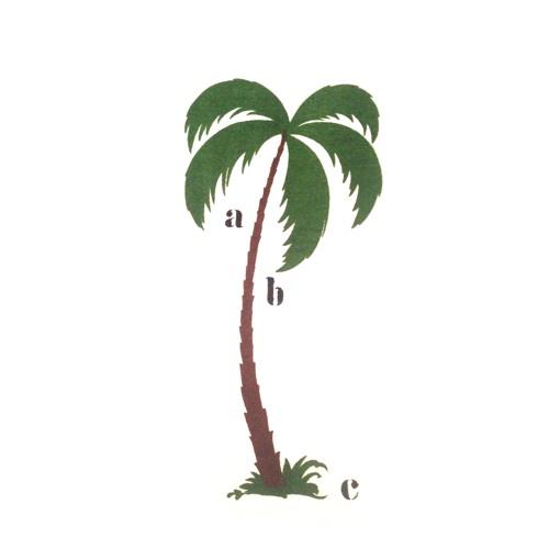 Palmario Recordings's avatar