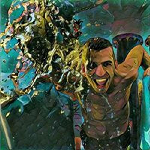 Stefan Nikolic's avatar