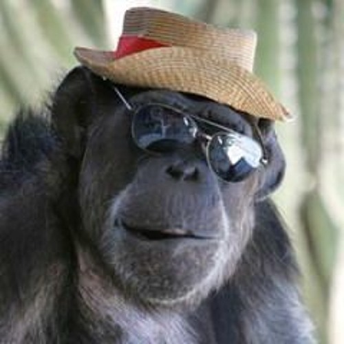 Joel Clark's avatar