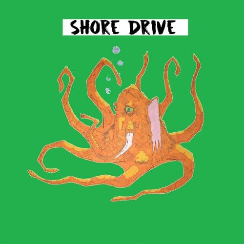 Shore Drive's avatar