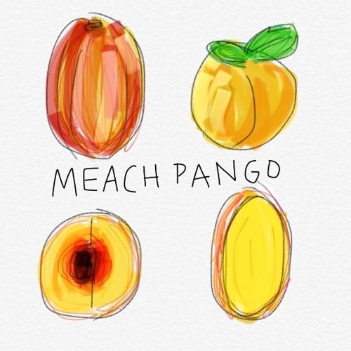 Meach Pango's avatar