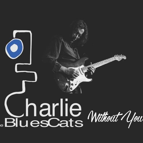 Charlie & The Bluescats's avatar