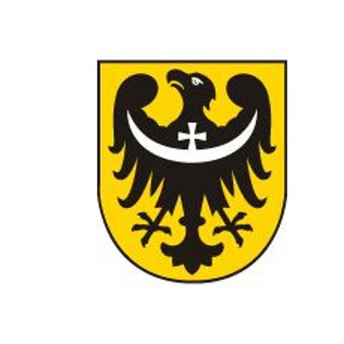 Nie ma barier Dolny Śląsk's avatar