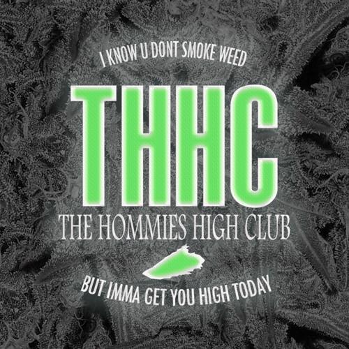 THE HOMMIES HIGH CLUB's avatar