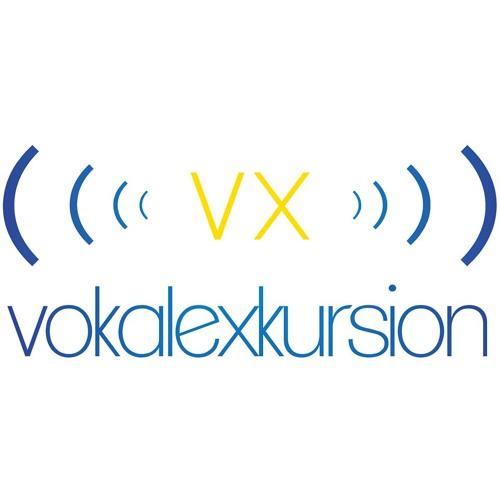 Vokalexkursion's avatar