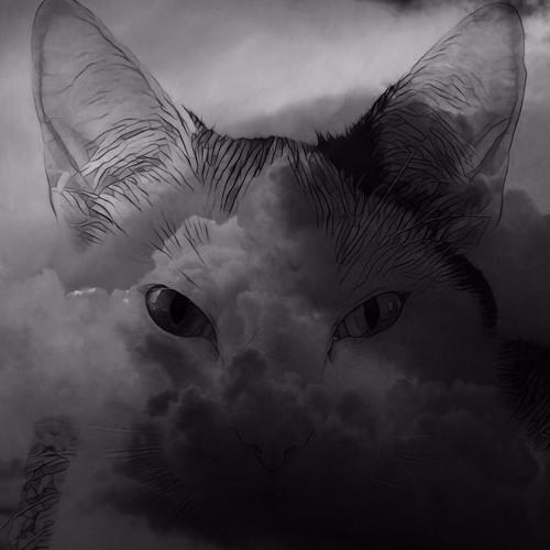 ɗʒɛmɪηaɪ's avatar