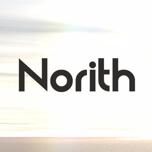 Norith's avatar