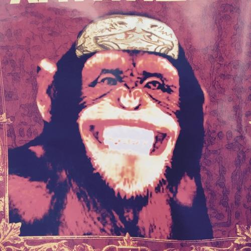 trolfi33's avatar