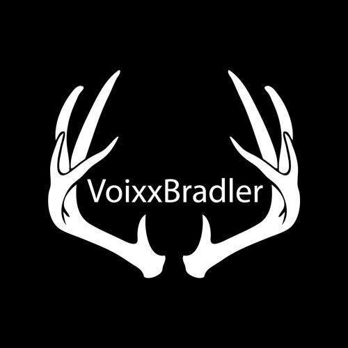 Voixxbradler's avatar