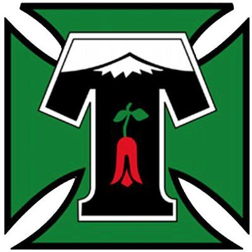 Club Deportes Temuco's avatar