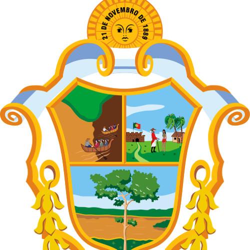 Rádio Câmara Manaus's avatar