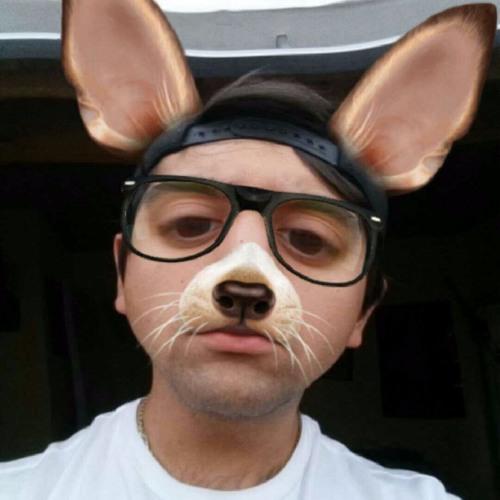 h rut's avatar