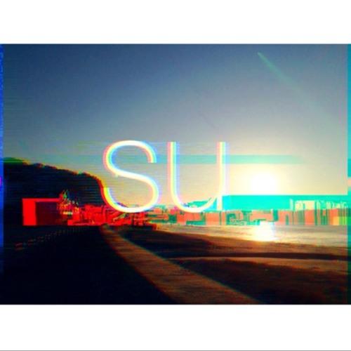 su's avatar