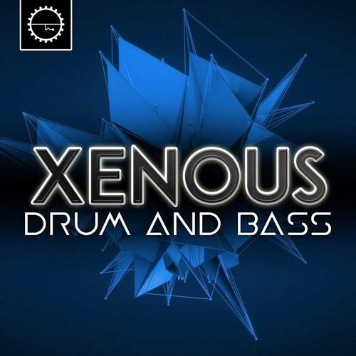 Xenous's avatar