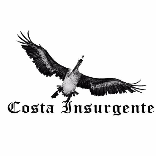 costa insurgente's avatar
