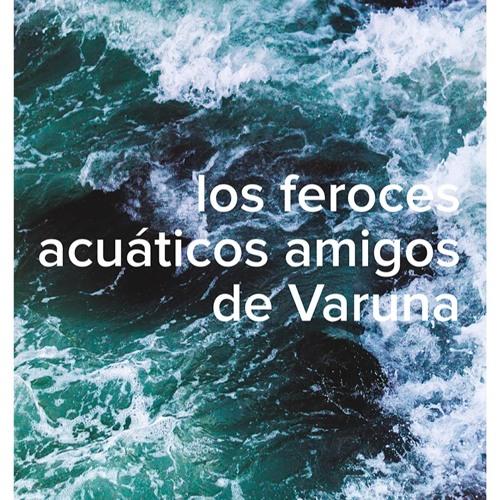 Los Feroces Acuáticos Amigos de Varuna's avatar