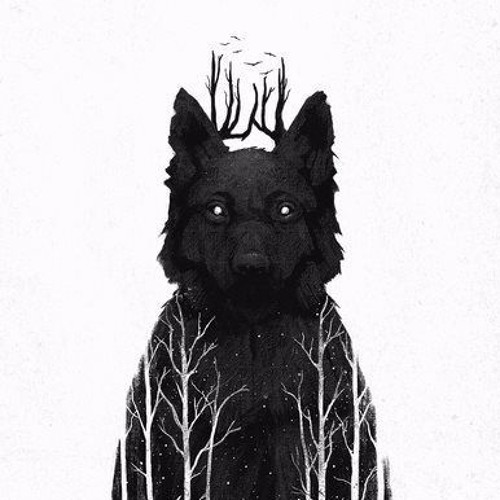 Salvador Fonseca's avatar