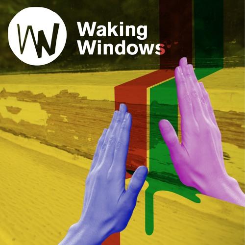 Waking Windows's avatar
