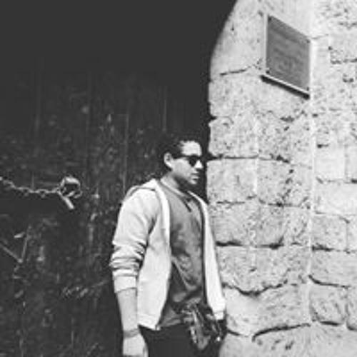 Bibo Elsweafy's avatar