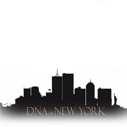 DNA of NEW YORK's avatar