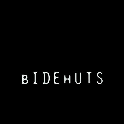bIDEhUTS.net's avatar