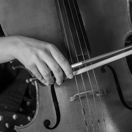 Ravel Trio I Clipped