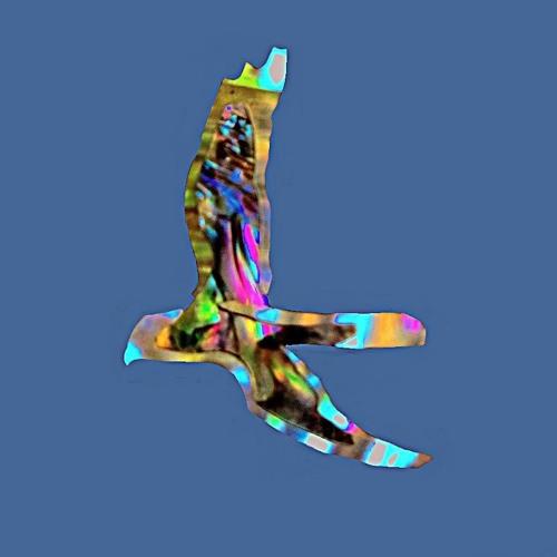 The Quiet Achievers (reposts)'s avatar