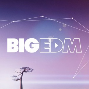 The Biggest EDM Sounds - Main Ch