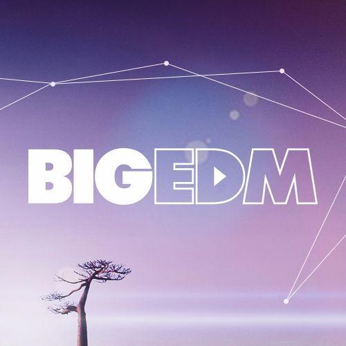 Big EDM Sounds's avatar