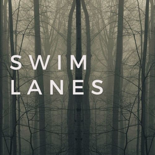 Swim Lanes's avatar