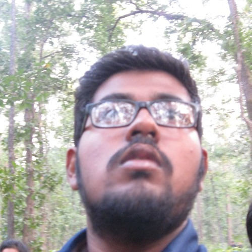 Deepro Roy's avatar