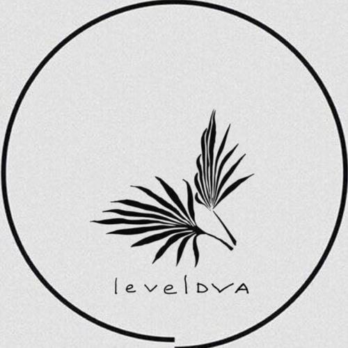 Leveldva's avatar