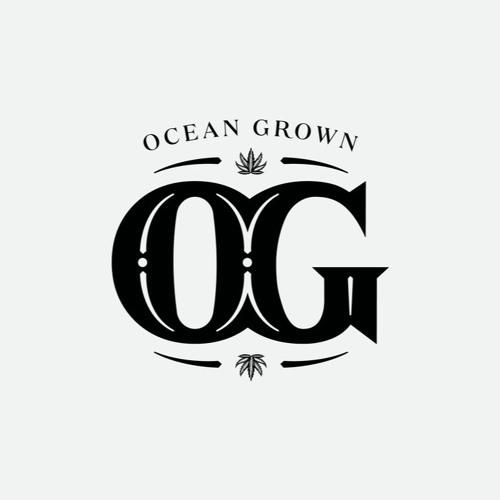 OG_HOLISTICS's avatar
