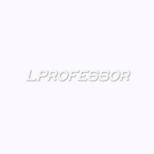 L.Professor's avatar