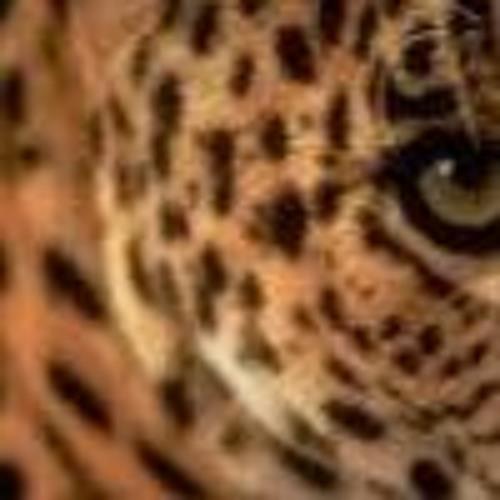 Cinzia 1's avatar